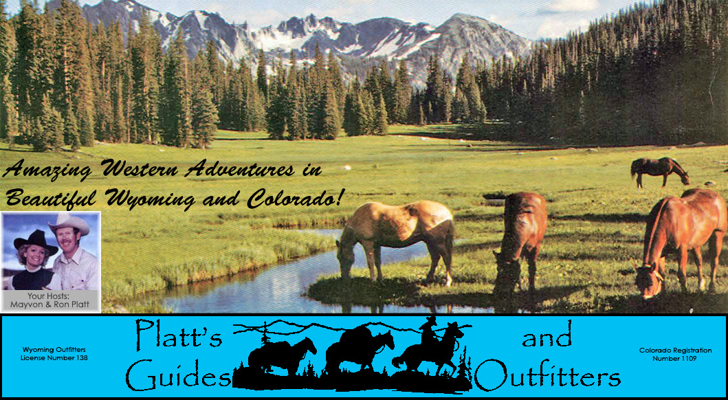Wyoming and Colorado adventures - hunting, fishing, photo safari, trail rides, family vacation