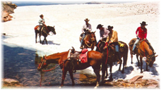 Wyoming family vacations, trail rides, cabin rental, bed and breakfast